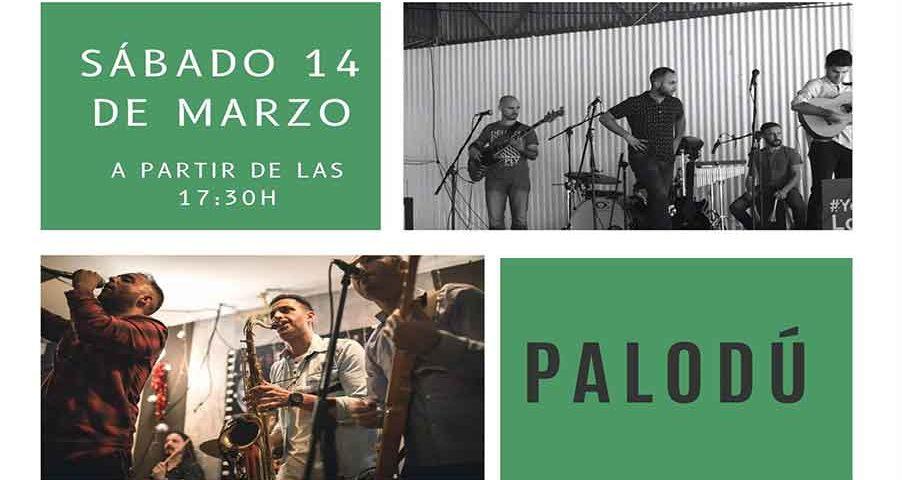 Actuación Palodú 14 de marzo